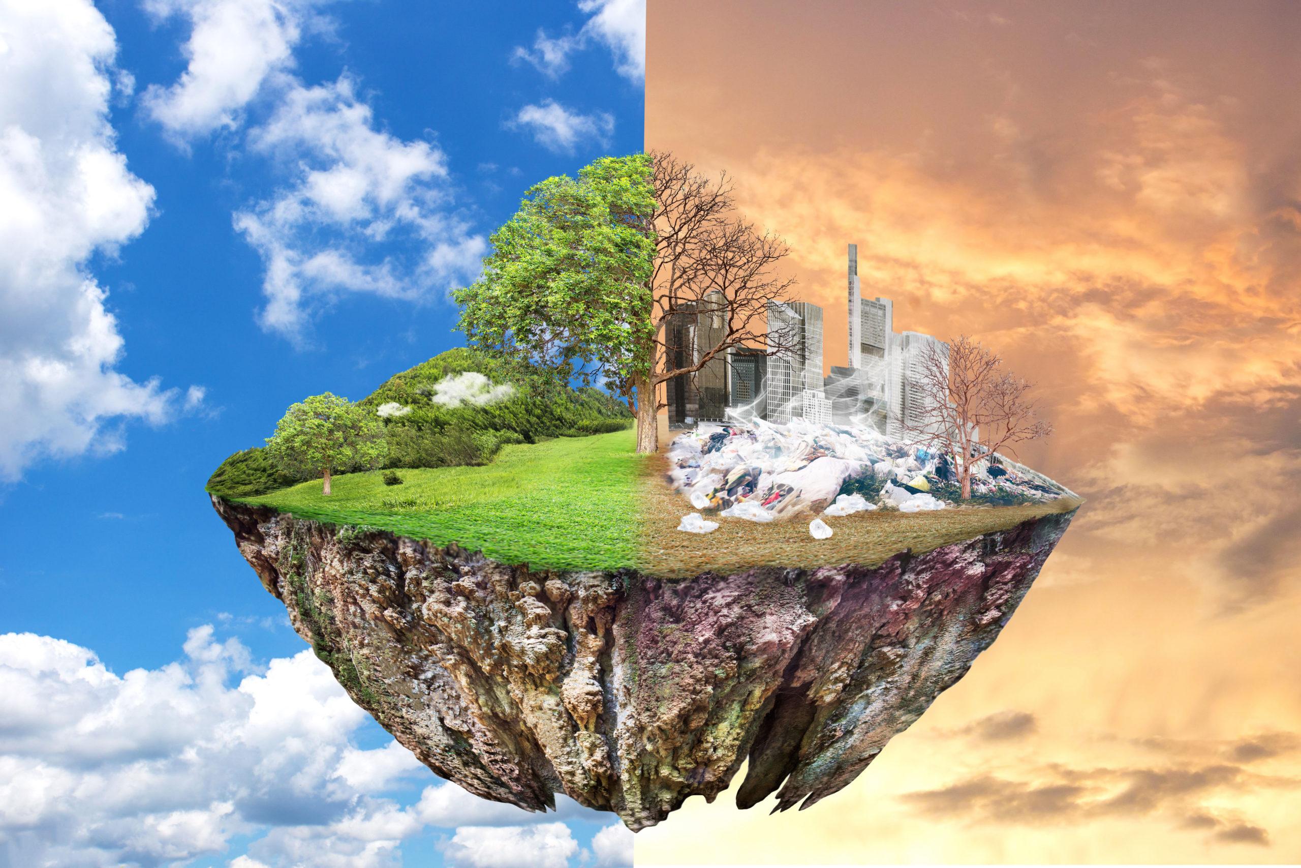 A supporto della sostenibilità